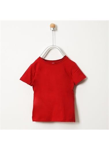 Panço T-Shirt 19117263100 Bordo